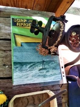 Brucifire Surf Report featuring Mike Esposito