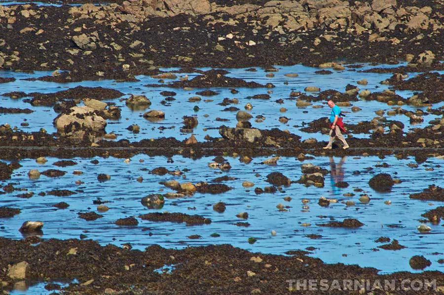 Man on the causeway to Lihou