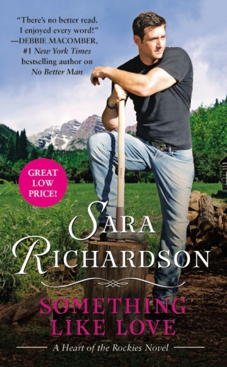 SOMETHING LIKE LOVE by Sara Richardson: Launch Day Blitz
