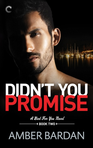 DIDN'T YOU PROMISE by Amber Bardan: Cover Reveal