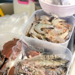 Fresh seafood from Farmer's Market!
