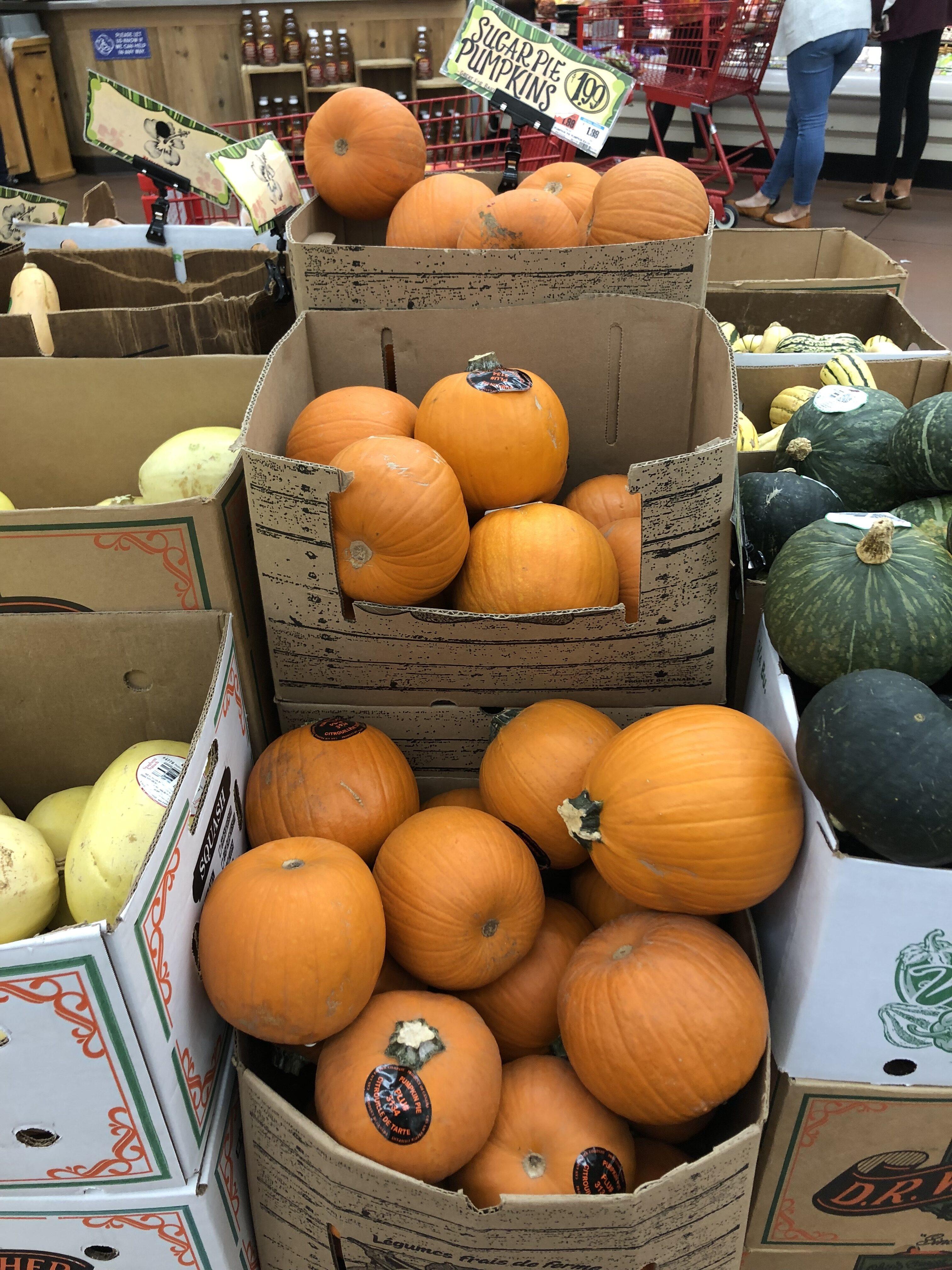 Trader Joe's Pumpkin Products