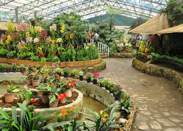 Places to Visit in Gangtok (10)