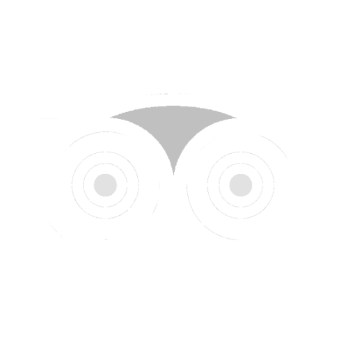 TripAdvisor Reviews on Maiale