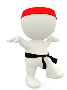 3D karate expert