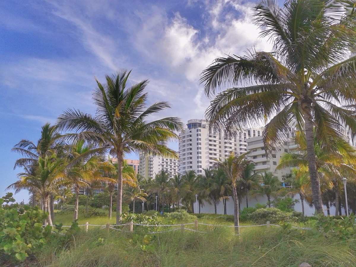 How to have fun in Miami Beach on a budget