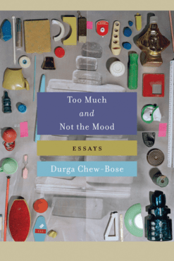 too-much-and-not-the-mood-durga-chew-bose