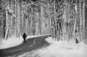 winter01nwhiteWEB