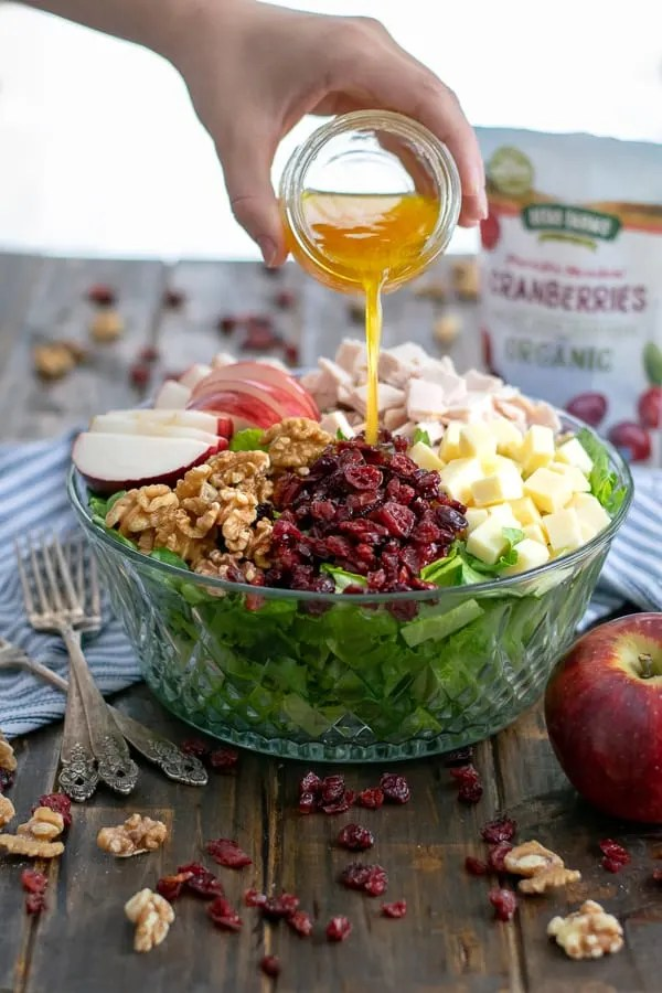 5. Apple Cranberry Salad with Turkey and Apple Cider Vinaigrette