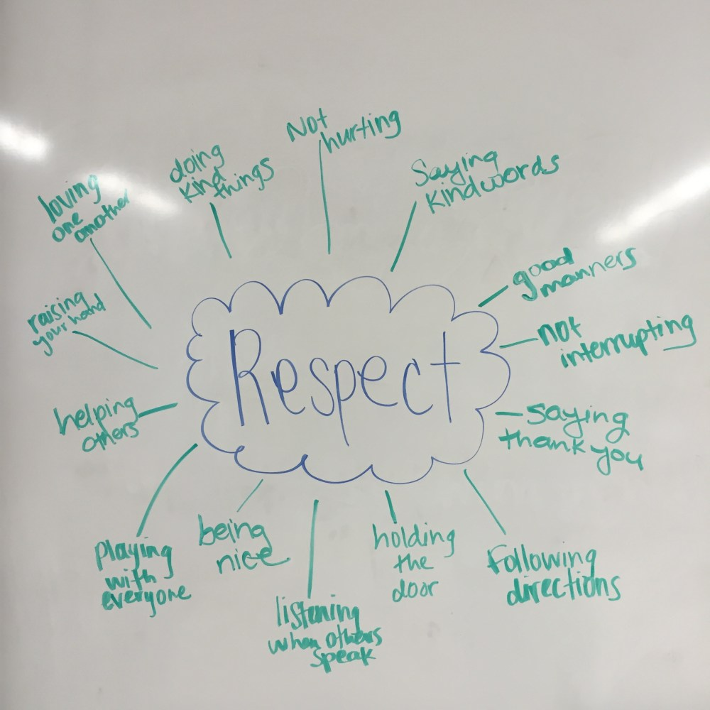 medium resolution of 1st Grade Lesson on Respect: What If Everybody Did That?