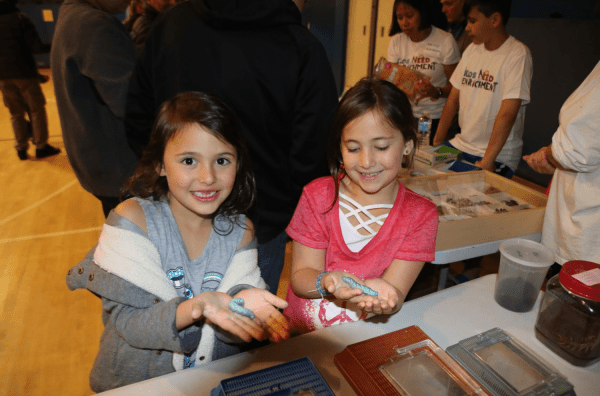 Stem Night Promotes Early Education Schreiber Times