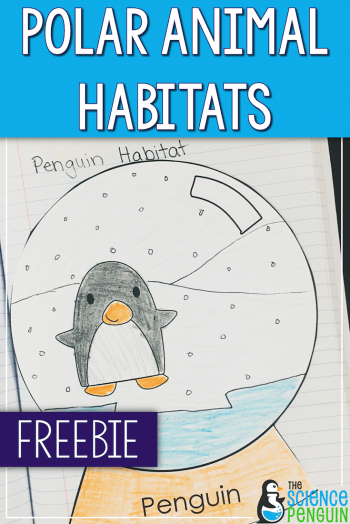 Polar Animal Habitats Snow Globes Freebie
