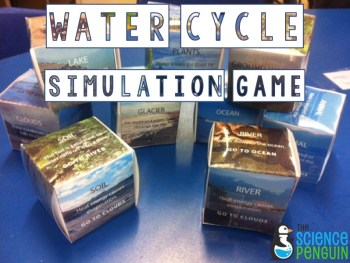 Water Cycle Dice Simulation Game