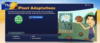 Plant Adaptations StudyJams