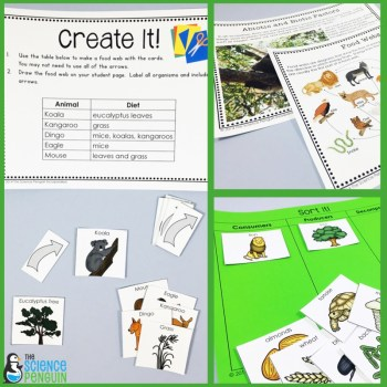 Ecosystems Science Stations Unit: food webs and abiotic and biotic elements in an ecosystem