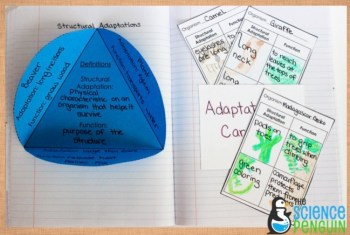 Structural Adaptations and Functions Science Notebook Pages