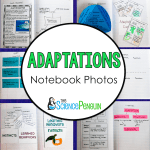 Adaptations Notebook Photo