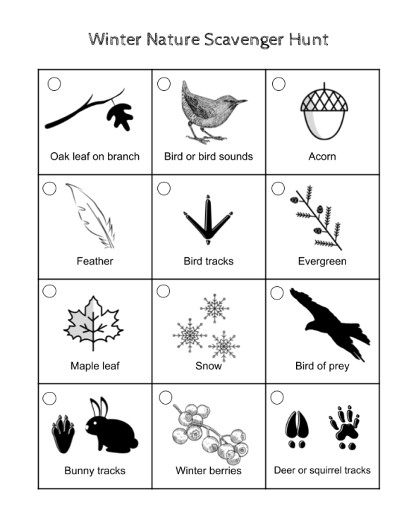 Free to download winter scavenger hunt printout for kids. Play nature bingo on your nature walks. Recommended for outdoor classroom and weekend exploration fun.