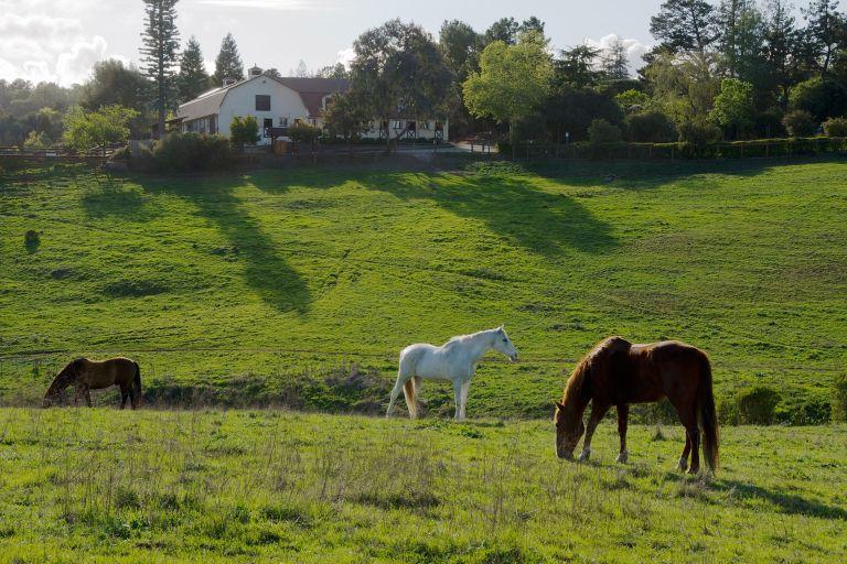 1920px Westwind Community Barn Los Altos Hills 768x512