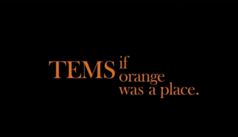 Tems If Orange was a place review