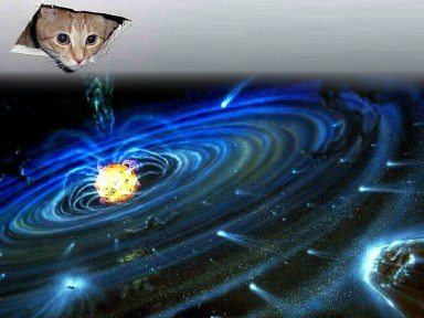 Cieling Cat