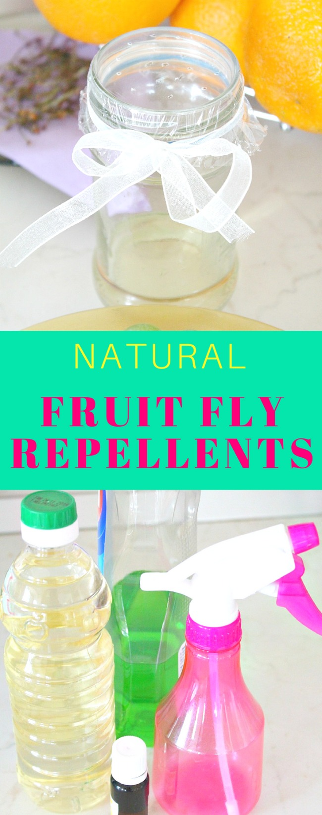 Natural fruit fly control