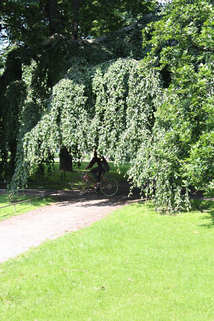 Stockholm parks