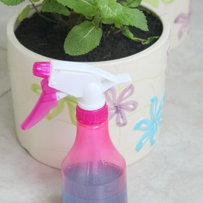How to make your own Natural Window Cleaner