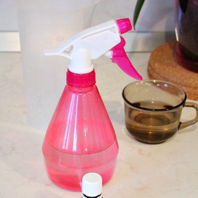DIY fridge odor remover spray