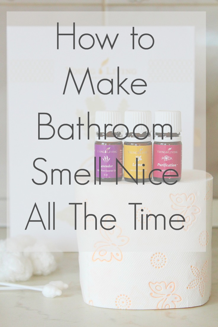 Bathroom Air Freshener Best Air Freshener For Bathroom To Keep It Smell Like A Spa All