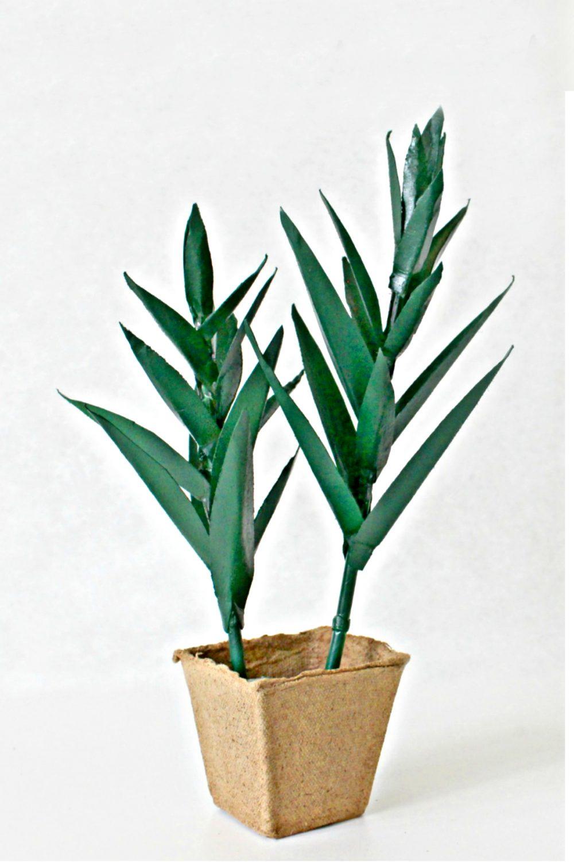 paper plant craft