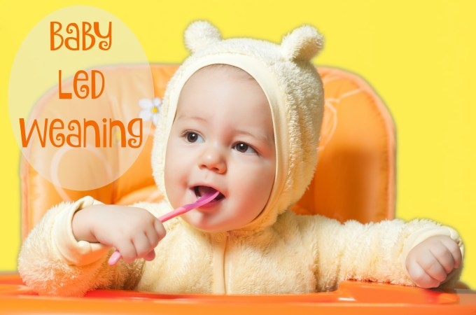 "Baby Led ""What""-ing? {What Exactly is Baby Led Weaning, and How it Could Save Your Sanity}"