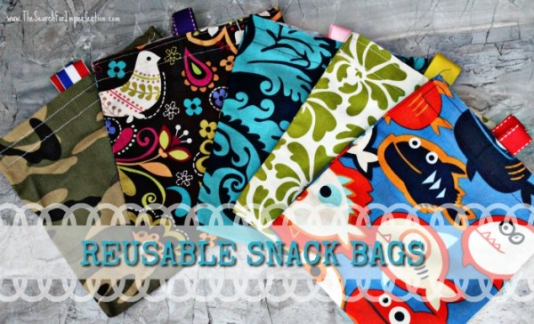 Homemade snack bags
