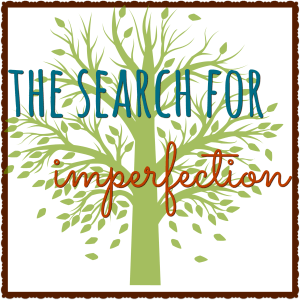 TheSearchForImperfection