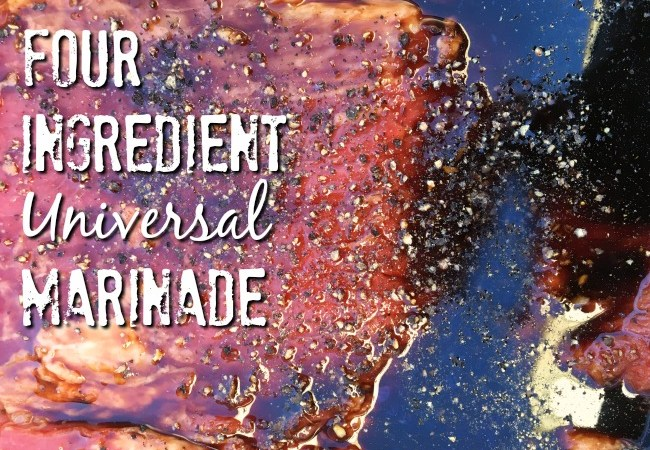 Four Ingredient Universal Marinade
