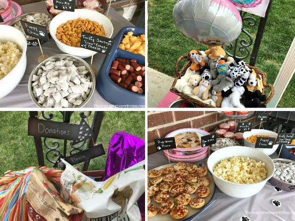 How to Throw an Animal Shelter Donation Birthday Party