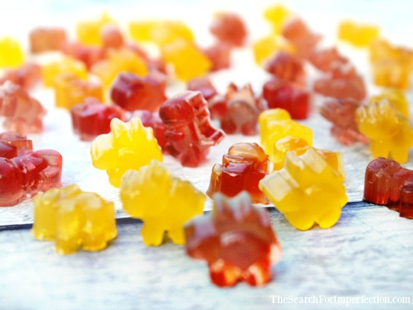 Homemade DIY Fruit Snacks