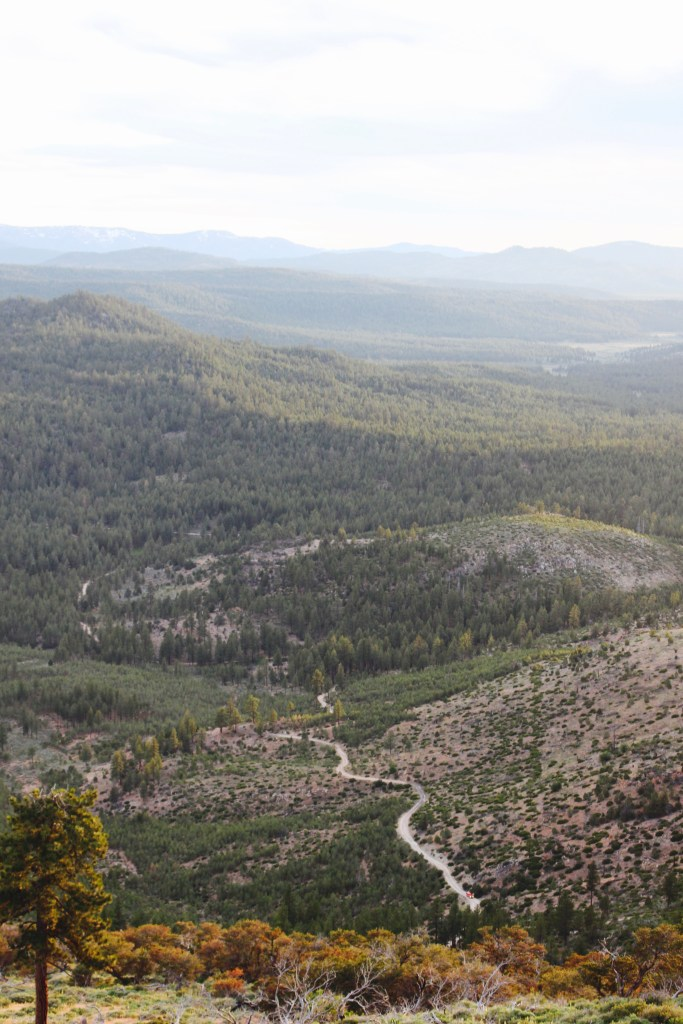 Black Mountain Lookout
