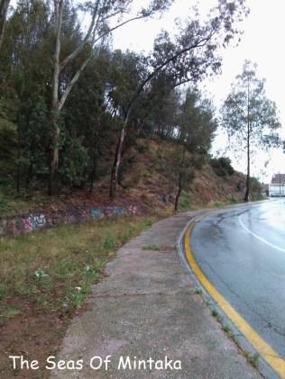 Rainy Woods Malaga