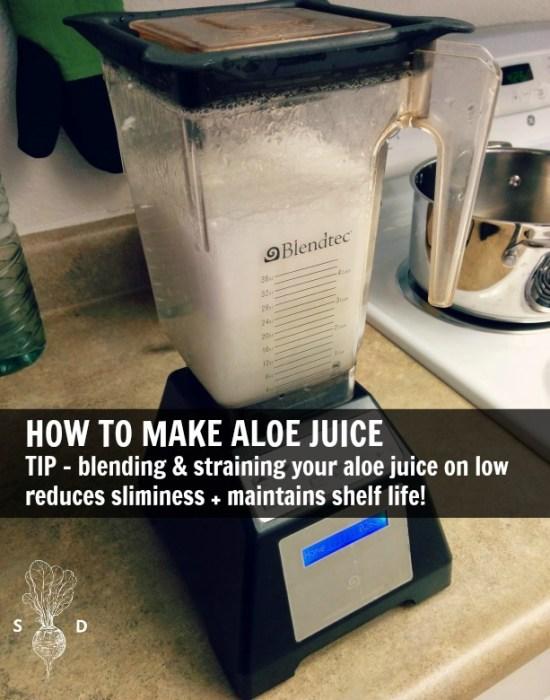 aloe-vera-juice-blender-strain