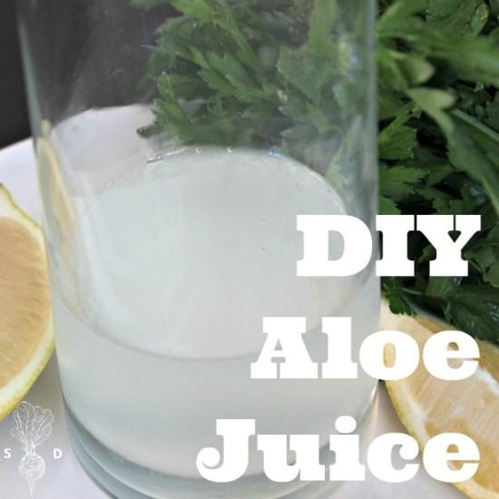 aloe vera juice recipe plant based digestion