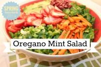 Oregano Mint Salad