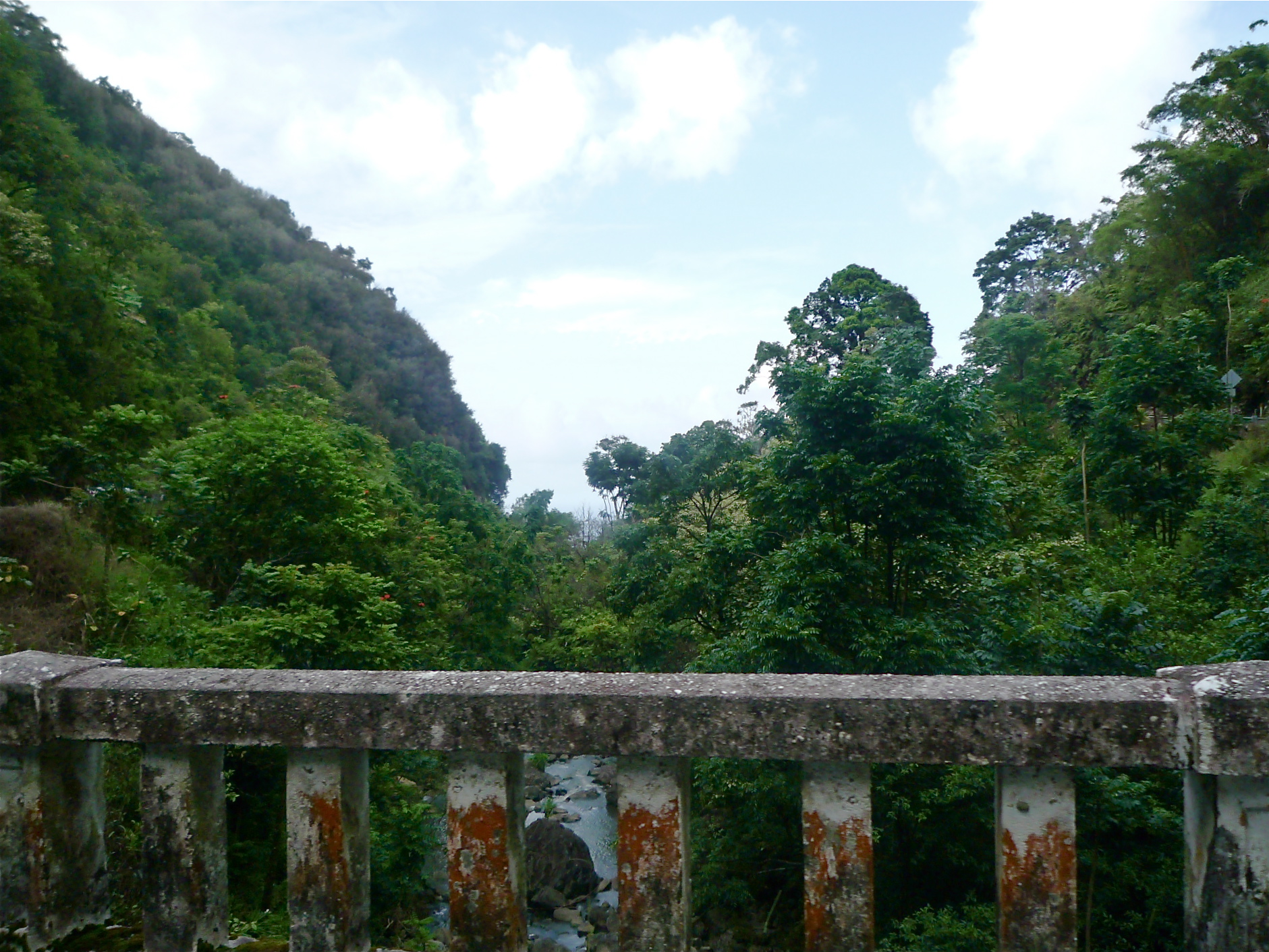 The view from one of many bridges on the Hana Highway