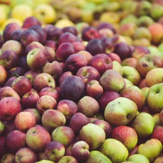 Apple Pressing Weekend