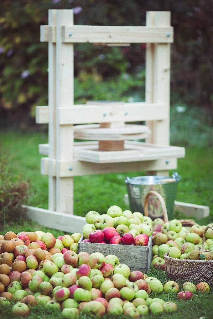 Apple Pressing Weekend -- DIY apple press | https://theseasonaltable.co.uk/smallholding/apple-pressing-weekend/