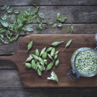 Pickled Wild Garlic Flower Buds -- Seasonal Food UK | https://theseasonaltable.co.uk/savoury/pickled-wild-garlic-flower-buds/