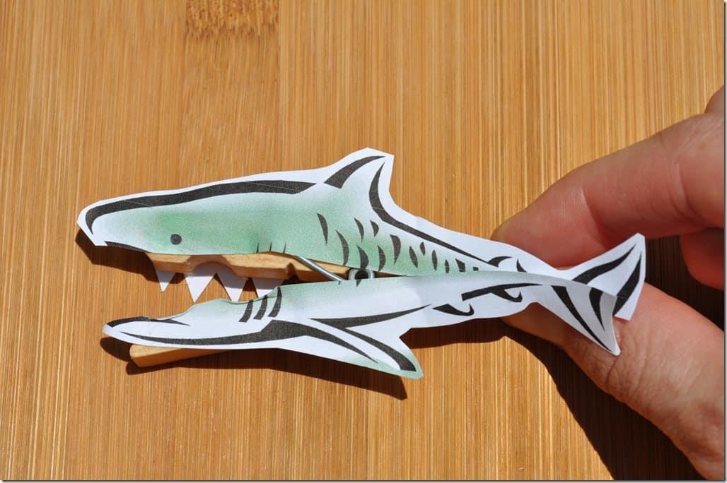 shark 2 open