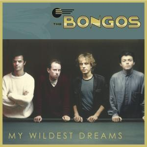 Bongos My Wildest Dreams