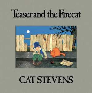 Cat Stevens Teaser and the Firecat 2021