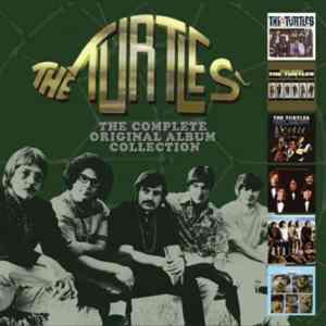 Turtles Album Collection